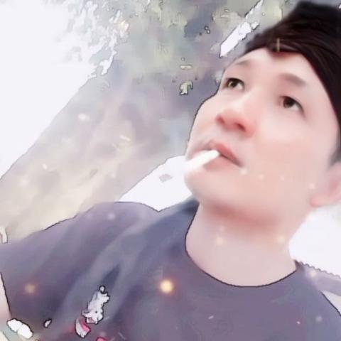 Yoshi Velia
