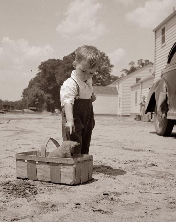 фотографии, дети, история, музей детства