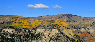 View of East Mountain across Huntington Canyon