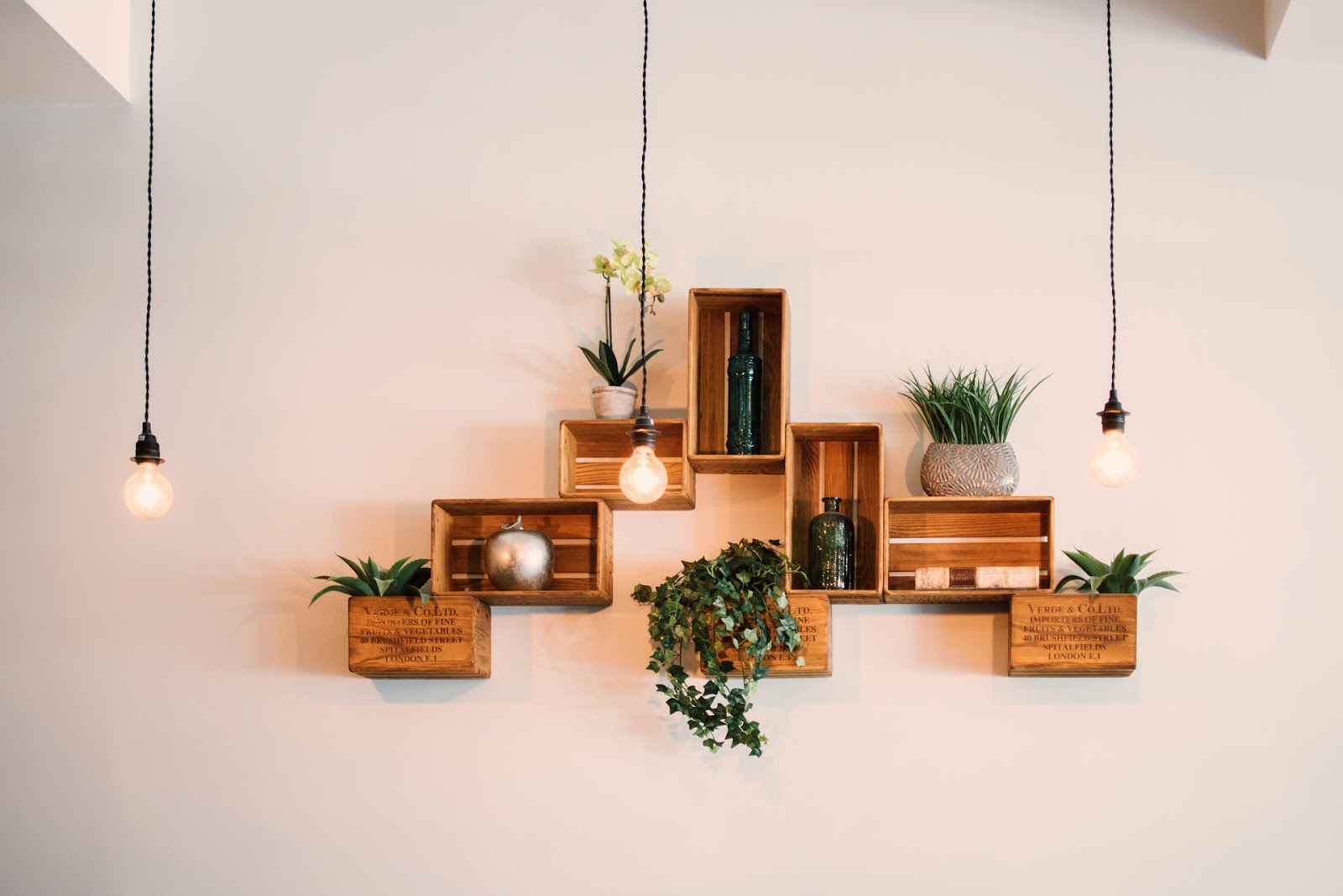 Plants on shelves for relaxing and balancing home decor.