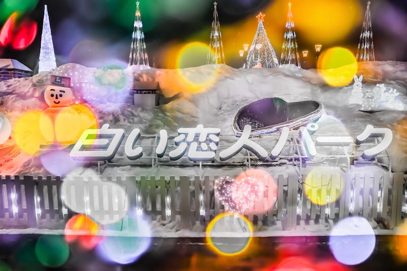 白い恋人パーク イルミネーション 写真5