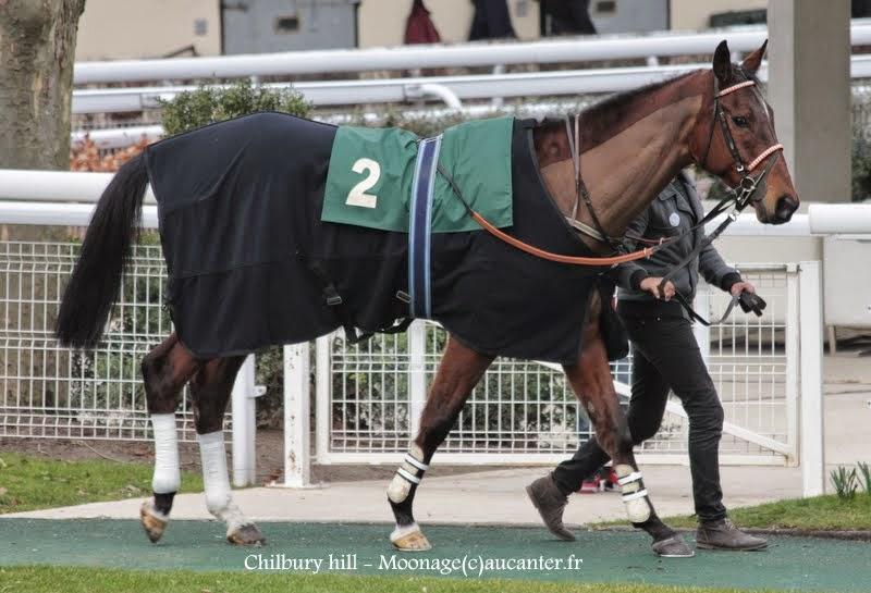 Photos Auteuil 1-03-2015 IMG_7046