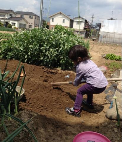 クワで畑の土を耕す子供