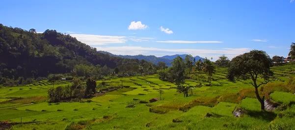 Férias na Indonésia