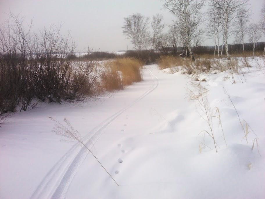 Иркутское Водохранилище. Сезон 2012/13 г. IMG_20130217_150219