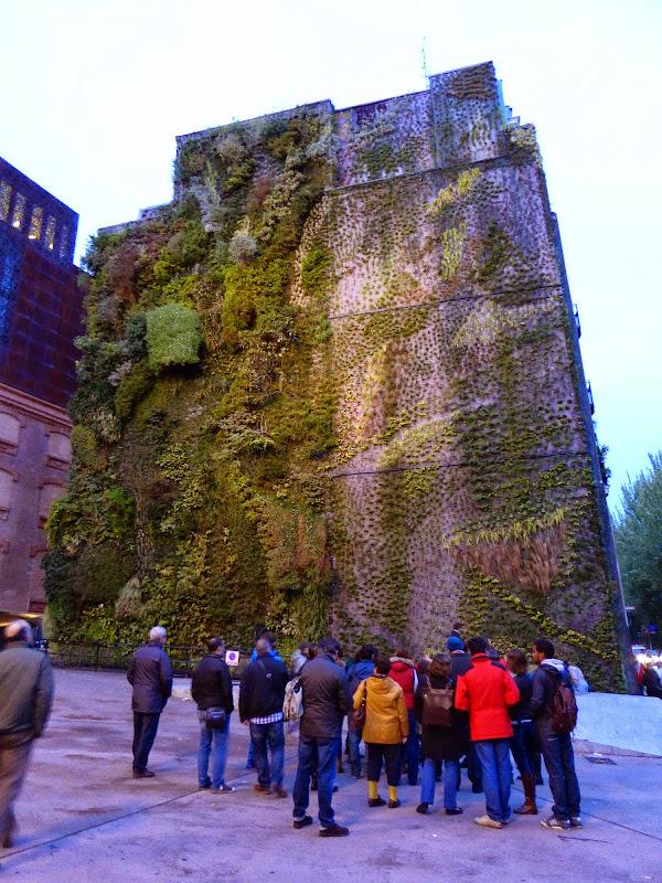 Curso de jardines verticales. Visita al Caixaforum