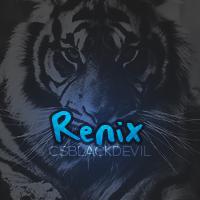 Renix