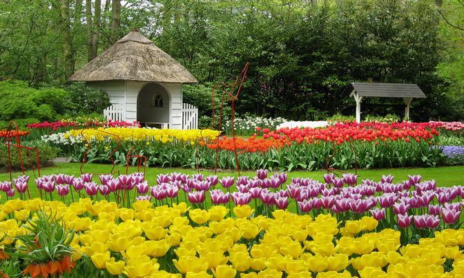 Ảnh vườn hoa ở Đà Lạt