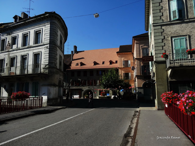 passeando - Passeando pela Suíça - 2012 - Página 15 DSC05594