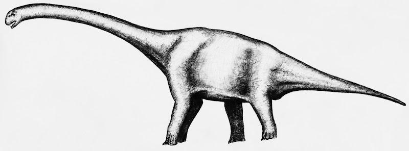 Die größten Sauropoden - Seite 2 Puertasaurus