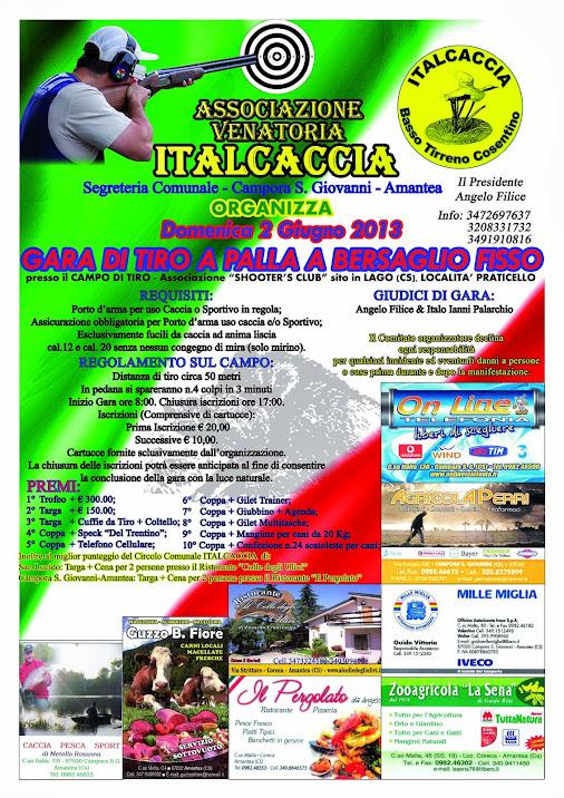 Gara Tiro a palla a bersaglio fisso - Italcaccia 2/6/2013