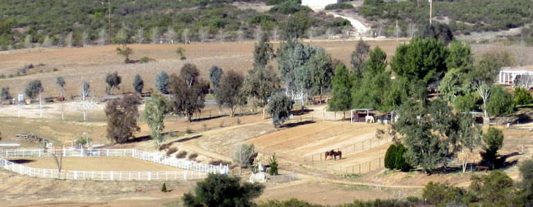View of the ranch at 41165 Rope Road