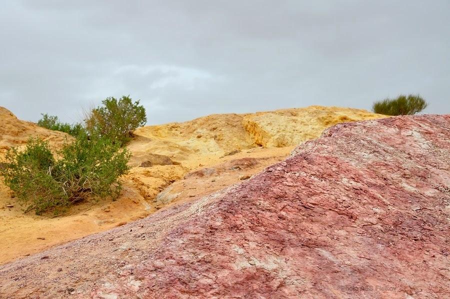 Пейзаж Цветных Песков. Экскурсия гида Светланы Фиалковой в пустыню Негев.
