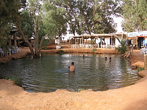 Ksar Ghilane oasis