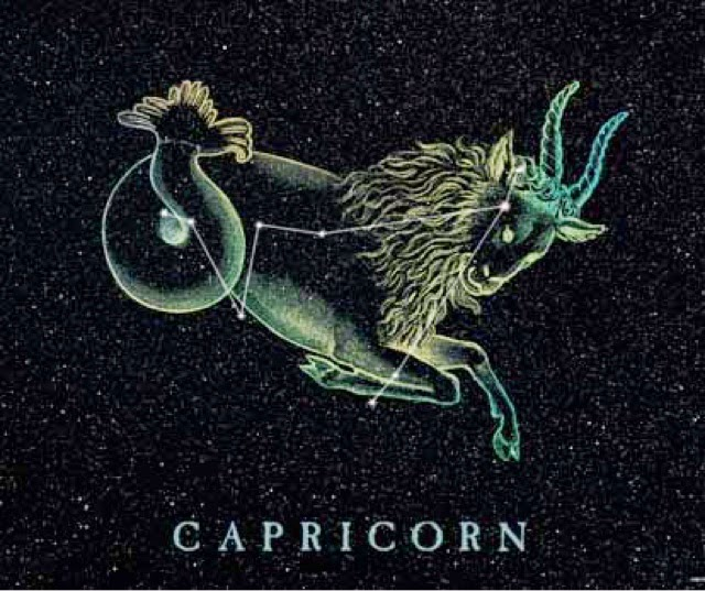 Capricorn Fashion - Astrological Counsel & Astro-Type Style