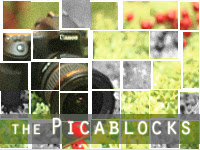 the Picablocks