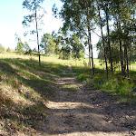 Edge of farm land on the western side of Congewai Valley (362306)