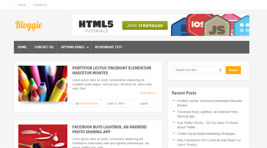 Top 10 Free premium WordPress themes of the year 2013