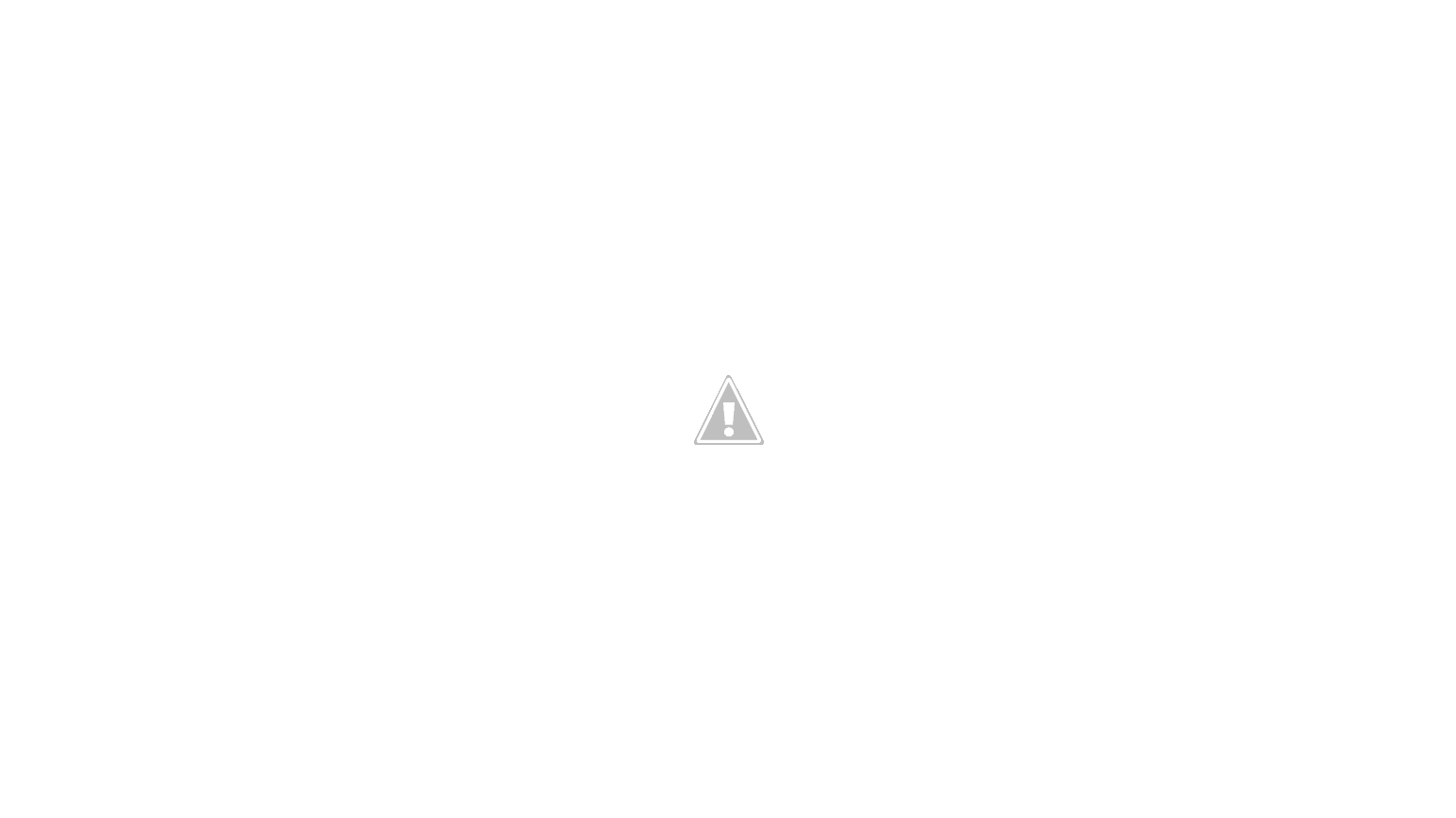 P: Predam monitor Acer al1751, funkcny, ale s chybou