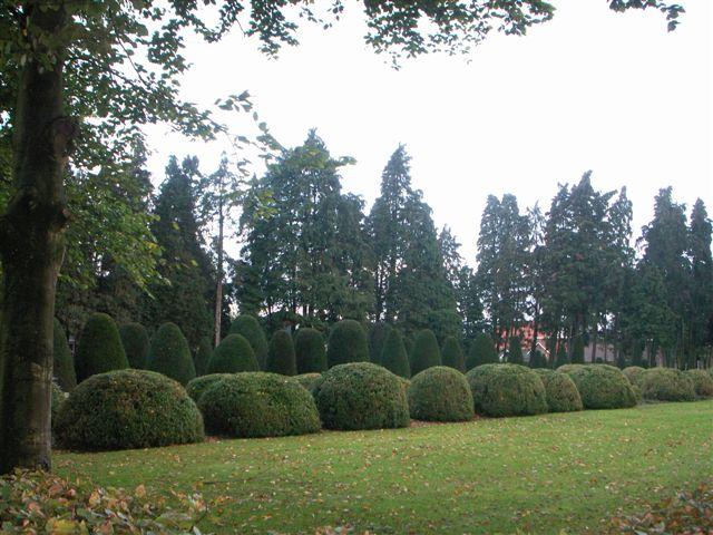 Deel van de begraafplaats