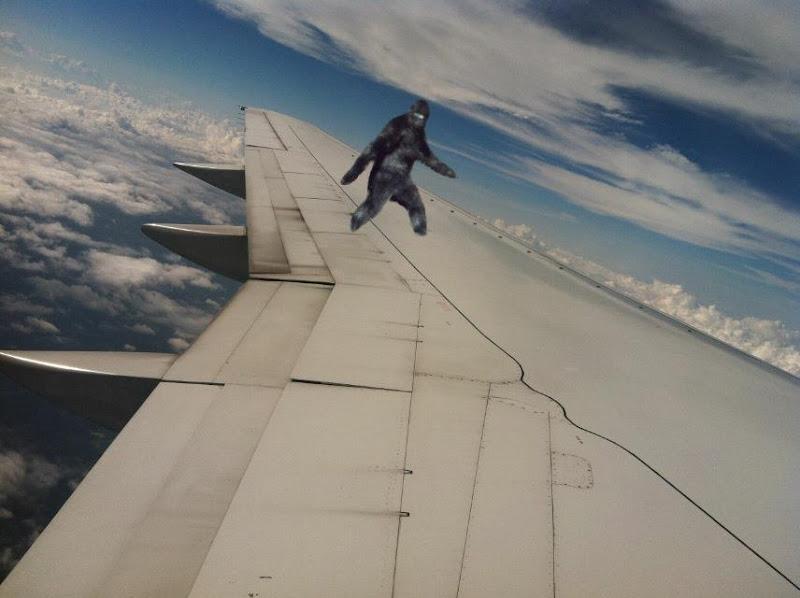 Bigfoot on plane wing