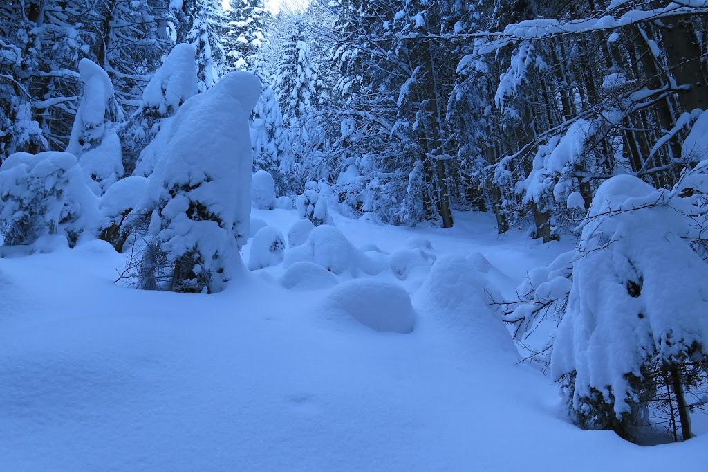 Der Schnee wurde immer mehr