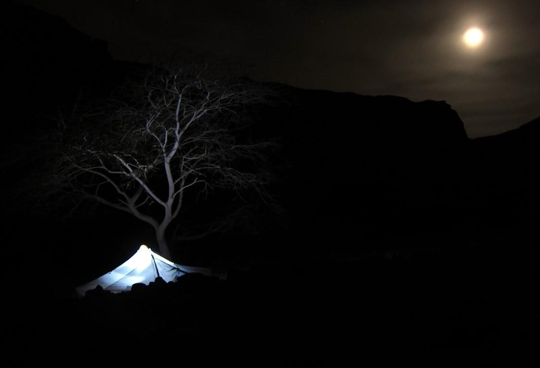 מומנט בלילה מדברי