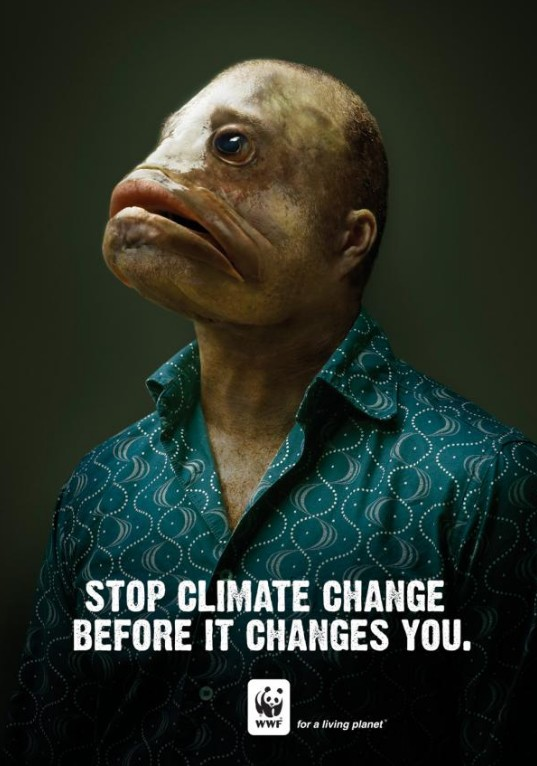 STOP CLIMATE CHANGE!