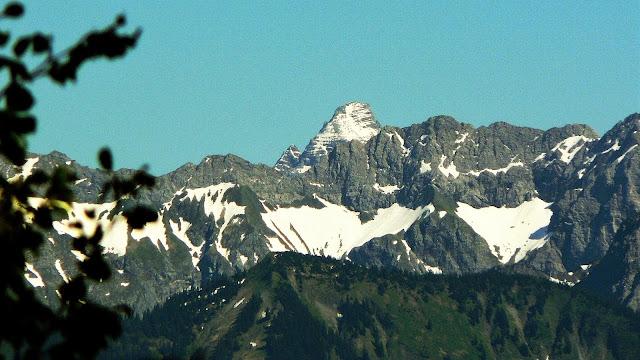 Blick Hochvogel vom Aufstieg zum Steineberg
