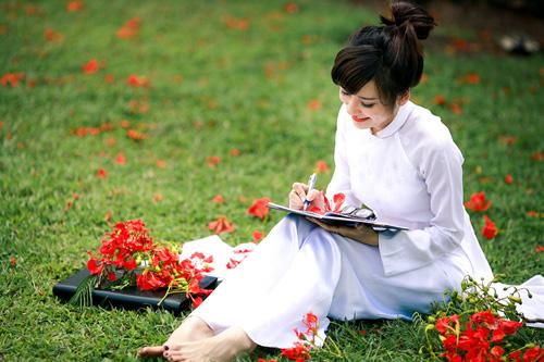 nữ sinh xinh đẹp bên hoa phượng
