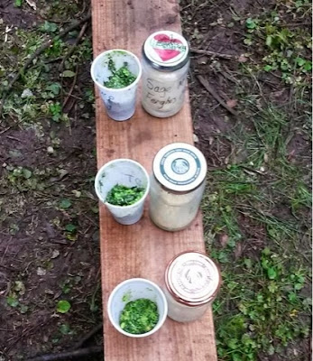 Wild Garlic Pesto and Jam Jar Butter