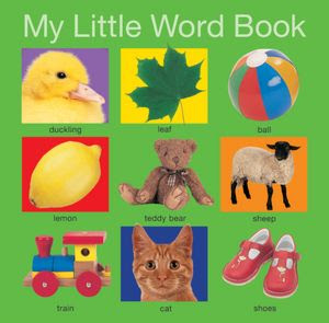 15 Board Books For Toddlers: My Little Word Book