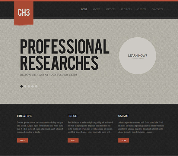 CH3 Vintage WordPress Theme