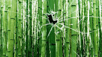 vista background broken glass bamboo