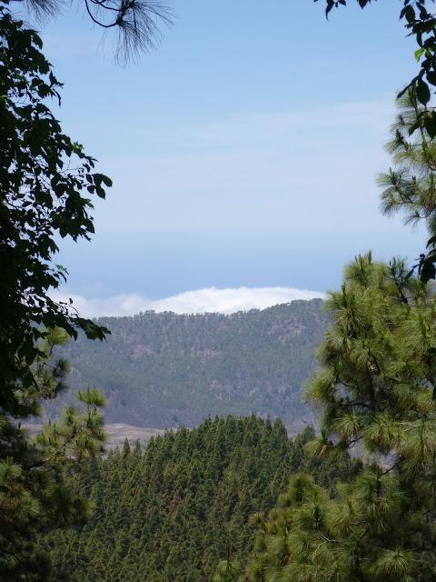 Berglandschaft im Inneren Gran Canarias.