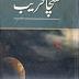 Sacha Fareb by Mahyuddin Nawab