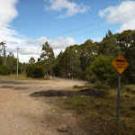 Clearing on east side of Jenolan Caves Rd (417467)