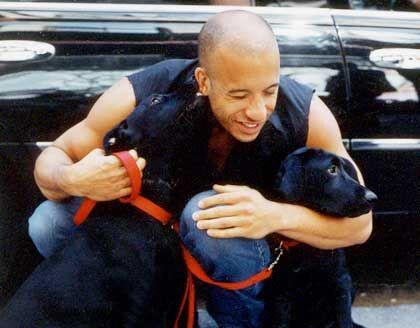 Vin Diesel and two dogs