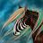 Cloudrunner C. avatar image