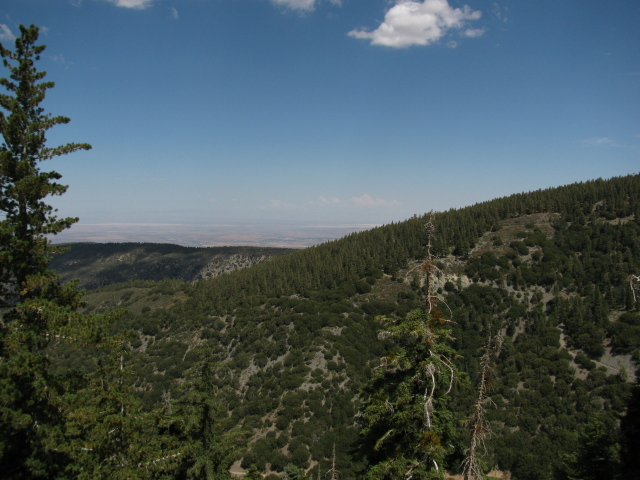 tree covered hills to the northeast and the desert beyond