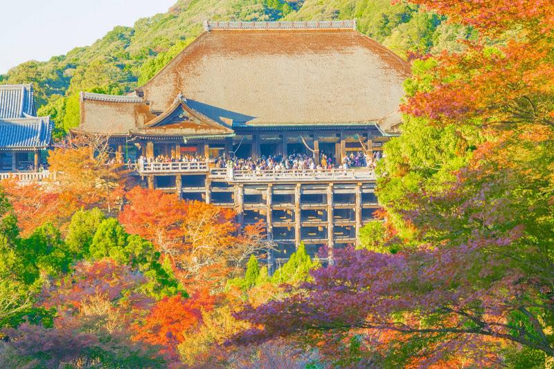 京都 紅葉 清水寺 写真8