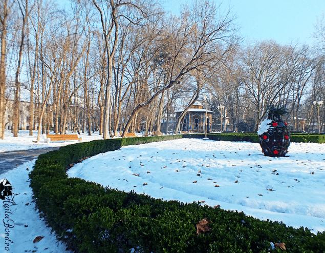 parc buzias iarna
