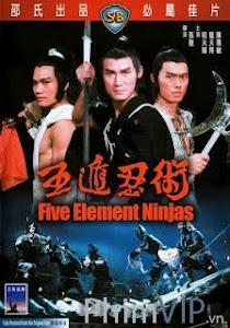 Ngũ Độn Nhẫn Thuật - Five Element Ninja poster