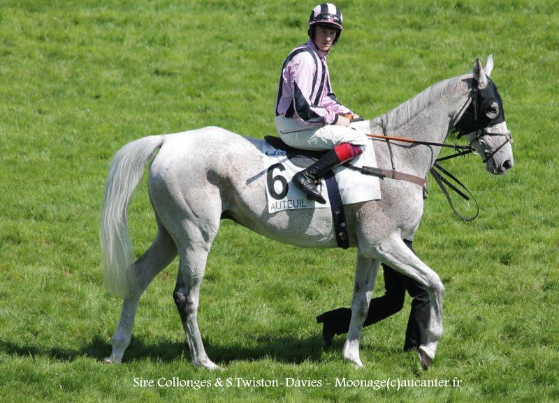 Photos Auteuil 17-05-2015 Journée du Grand Steeple IMG_0176