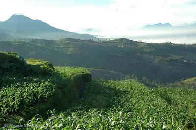 Caringin Tilu, Indahnya Alam di Bandung Timur