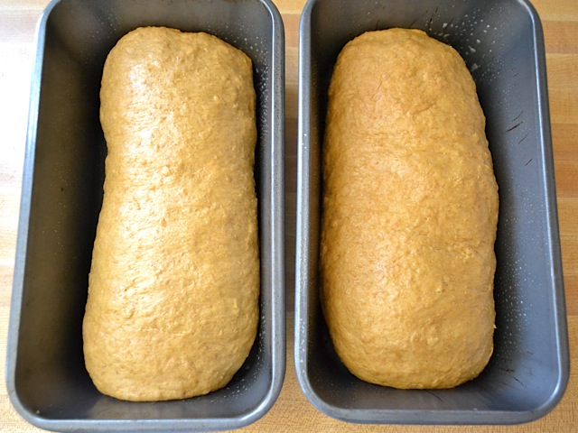 two bread pans with dough in them ready to bake