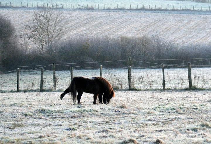hiver2013