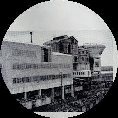 Nigel Nelly