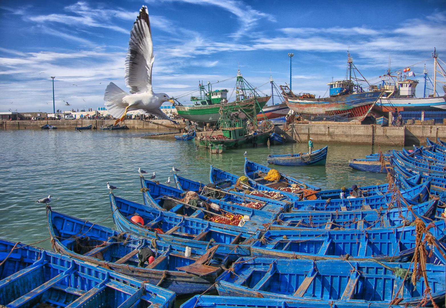 Reisinformatie Marokko