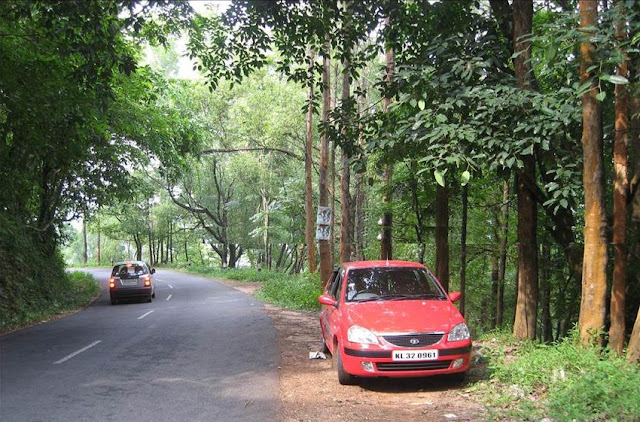 Snaps from Idukki part two 3